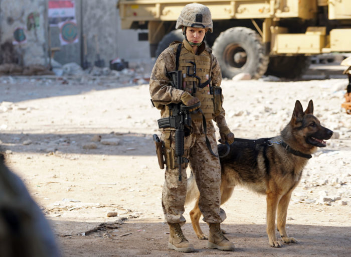 Megan Leavey – Movies and Shakers